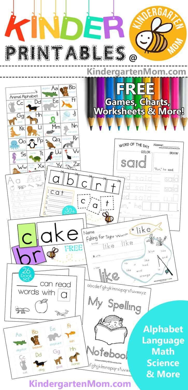 Arctic Animal Preschool Printables Preschool Mom