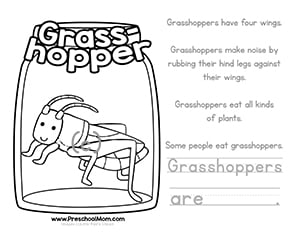 Grasshopper Color And Learn Worksheet