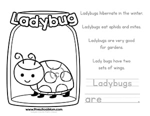 Ladybug Color And Learn Worksheet