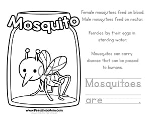 Color & Learn Bug Worksheets - Preschool Mom
