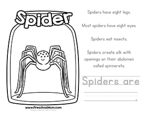 Spider Color And Learn Worksheet
