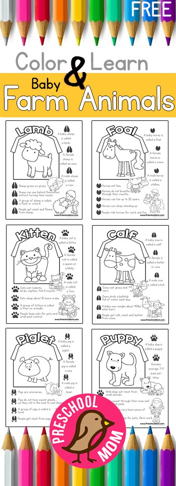 Letter Farm Animals