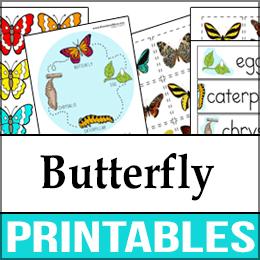 ButterflyWhite